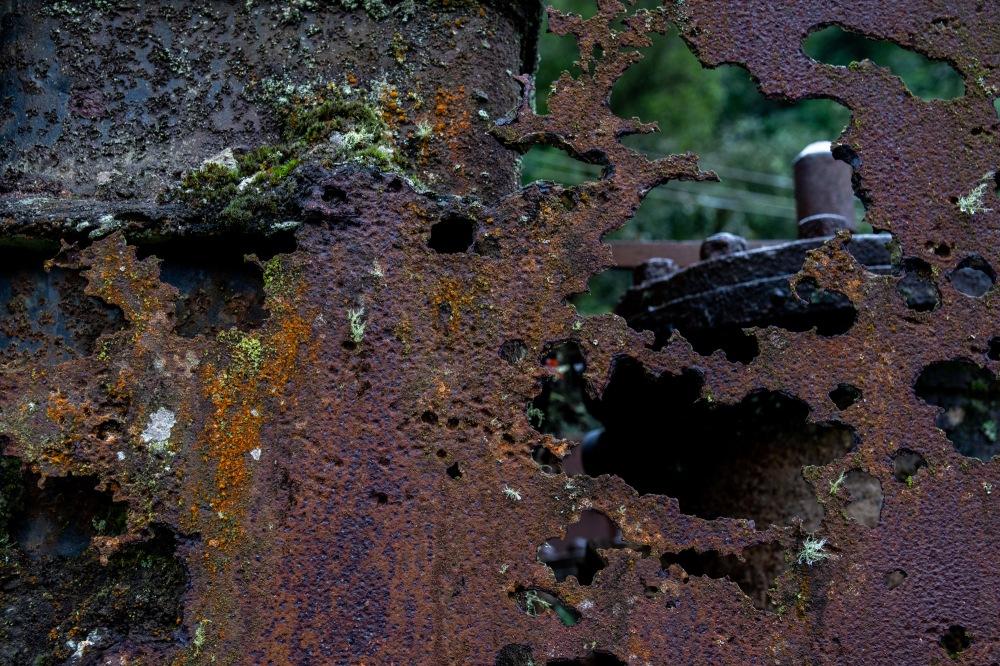 2 Ferrugem Ppiacaba Nikon (18) 16Set18-1