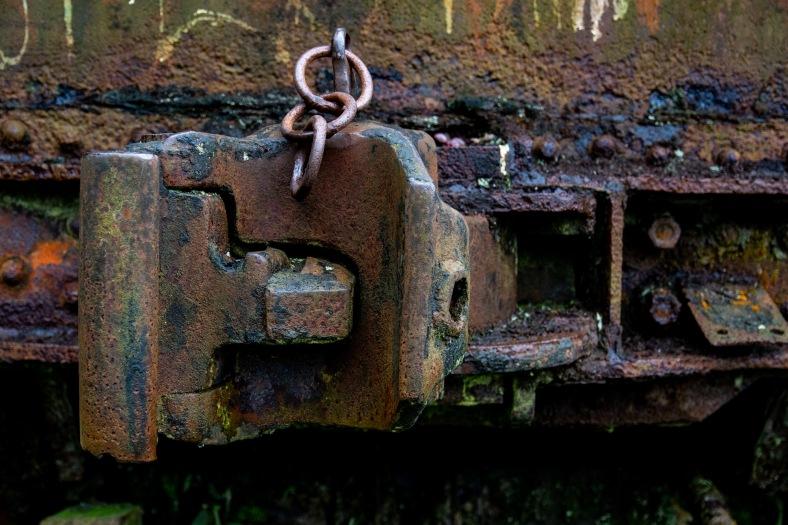 4 Ferrugem Ppiacaba Nikon (13) 16Set18-1