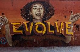 Bushwick Collective (2) Brooklyn NYC Mai17 (1 de 1)