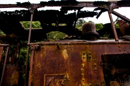 Corrosão (10) Ppiacaba Nikon 16Set18-1