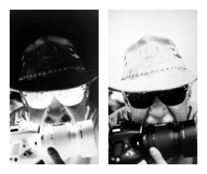 Portrait collage of me