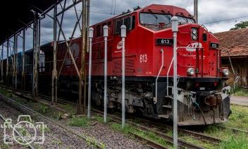 Train at the Station (4) São Carlos, SP-Brazil