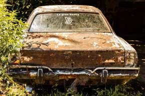 Cars (17)