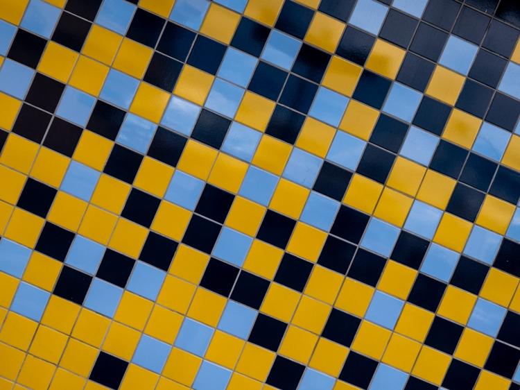 Colors & Textures (107) Sanca 05Mar19 (1 of 1)