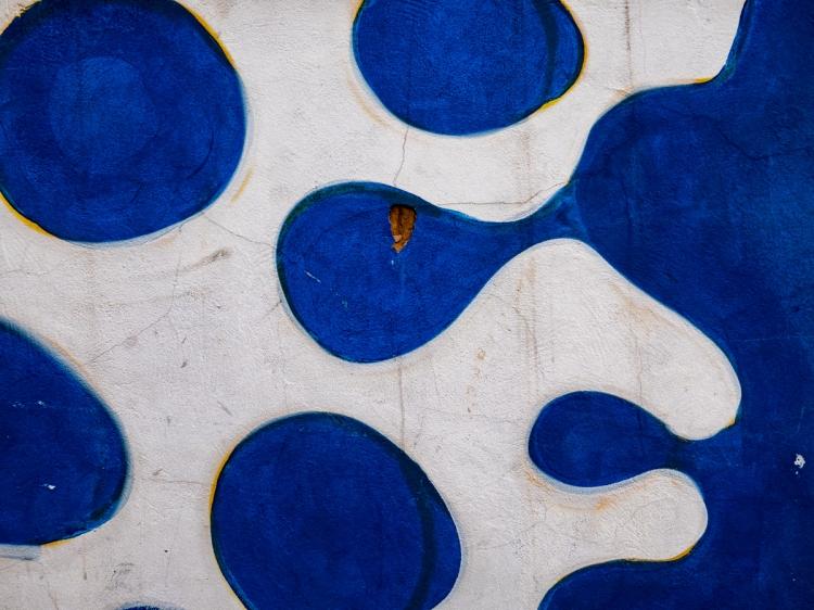 Colors & Textures (34) Sanca 05Mar19 (1 of 1)