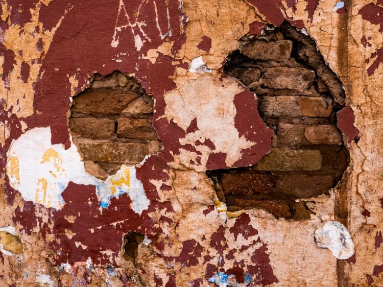 Colors & Textures (56) Sanca 05Mar19 (1 of 1)