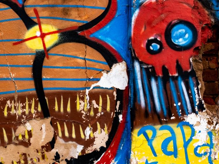 Colors & Textures (97) Sanca 05Mar19 (1 of 1)