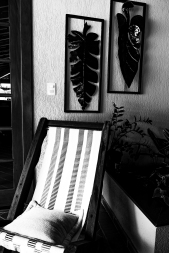Still Monochrome Life (27) (1 of 1)
